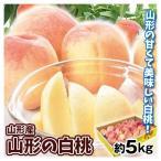 食品 大特価 山形の白桃 5kg 冷蔵便 1組 冷蔵便 モモ 国華園