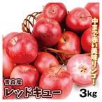りんご 青森産 レッドキュー 3kg 1箱 送料無料 食品 国華園