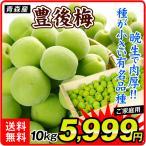 梅 青森産 生梅 豊後梅 10kg1組 送料無料 生梅 木箱 食品 国華園