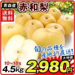 梨 青森産 赤和梨 (4.5kg) 品種おまかせ 10〜18玉 ご家庭用 なし ナシ 和梨 果物 フルーツ 国華園