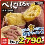 さつまいも 熊本・宮崎産 紅はるか(5kg) 訳あり ご家庭用 甘藷 サツマイモ 野菜 数量限定 国華園