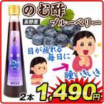 長野産 飲む酢ブルーベリー2本 グルメ 食品 国華園