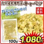 九州産 乾燥野菜 キャベツ 100g 1袋 送料無料 メール便 食品 国華園