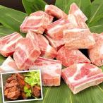 骨付き 豚スペアリブ 500g 冷凍便 食品 国華園
