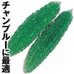 野菜たね ウリ 太苦瓜(れいし) 1袋(10ml) / 種 タネ