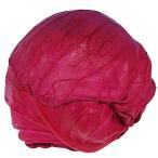 野菜たね キャベツ レッドキャベツ 1袋(3ml) / タネ 種