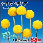 花たね クラスペディア 1袋(50mg) / 種 タネ
