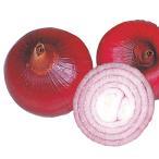 野菜たね タマネギ 中生赤玉葱 1袋(3ml入)