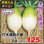 野菜たね ダイコン 打木源助大根 1袋(10ml入)