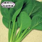 野菜たね 健康野菜 正月菜(愛知特産の小松菜) 1袋(10ml入)