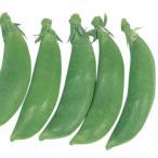 種 野菜たね マメ エンドウ 早生スナップ豌豆 1袋(30ml) / 野菜のタネ 野菜 種子 国華園