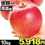 りんご 青森産 世界一 10kg 1組