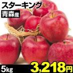 りんご 青森産 スターキング 5kg 1組