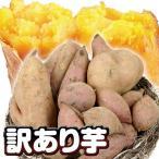 さつまいも 安納芋 種子島産 訳あり安納紅 5kg 1組