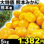 大特価 熊本産 みかん 5kg 1箱