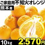 熊本家庭用 不知火オレンジ10kg