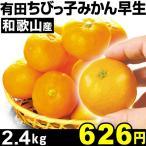 和歌山産 有田ちびっ子みかん 早生 2.4kg