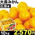 広島産 大長みかん 10kg 1箱