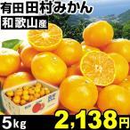 和歌山産 田村みかん 5kg 1組