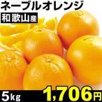 和歌山産 ネーブルオレンジ 5kg1