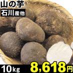 石川産 他 山の芋 10kg1箱