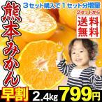 みかん 【超お買得】 熊本県 みかん 2.4kg   2セット目から送料無料 3セットで1セット分増量