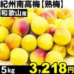 ウメ 和歌山産 紀州南高梅・熟梅 5kg 1箱 梅 冷蔵 食品