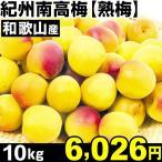 ウメ 和歌山産 紀州南高梅・熟梅 10kg 1箱 梅 冷蔵 食品