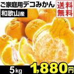 みかん 和歌山産 ご家庭用 デコみかん 5kg 1箱 送料無料 デコポンと同品種
