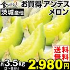メロン 限定  大特価 熊本・茨城・山形産  アンデスメロン 4kg 1箱(3〜8玉)【早割セール】