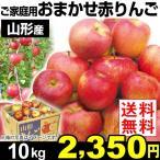 りんご  山形産 おまかせ赤りんご 10kg ご家庭用 送料無料【2017年新物りんご・秋発送】