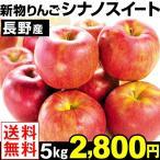 りんご 長野産 シナノスイート 5kg 送料無料【2017年新物りんご・秋発送】