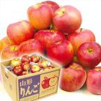 リンゴ 山形産 お楽しみ赤りんご 5kg 1箱 送料無料 ご家庭用 訳あり★品種おまかせ★