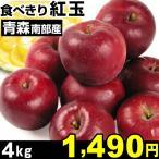 リンゴ 青森南部産 食べきり紅玉 4kg 1箱