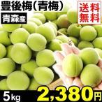 生梅 青森産 ご家庭用 青梅【豊後梅】 5kg 1組 送料無料