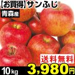 リンゴ 【お買得】青森産 サンふじ 10kg 1箱 送料無料【2017年新物りんご・秋発送】