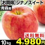 リンゴ 【お買得】青森産 シナノスイート 10g 1箱 送料無料【2017年新物りんご・秋発送】