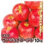 りんご 青森産 サンジョナゴールド 10kg 1箱 送料無料【2020年新物りんご・秋発送】 国華園
