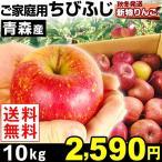 リンゴ 青森産 ちびふじ ご家庭用 10kg 1箱 送料無料【2017年新物りんご・冬発送】