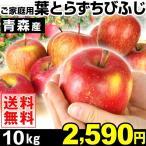 リンゴ 青森産 葉とらず ちびふじ 10kg 1箱 送料無料【2017年新物りんご・冬発送】