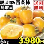 柿 鳥取産 ご家庭用 西条柿・脱渋済み 5kg 1箱 送料無料 合わせ柿 渋柿