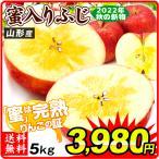 りんご 山形産 ご家庭用 蜜入りふじ 5kg 1箱 送料無料  国華園