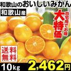 みかん 和歌山産 和歌山のおいしいみかん 10kg1箱 送料無料 ご家庭用 特別版