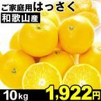 八朔 - みかん 和歌山産 ご家庭用 はっさく 10kg1箱 八朔 食品