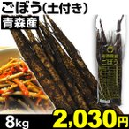 ゴボウ 青森産 ごぼう(土付き) 8kg1組 食品