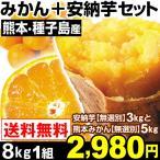 みかん 安納芋 熊本産 売れっ子みかん5kg+安納芋3kgセット 8kg1組 送料無料 温州みかん 安納芋 特別版
