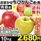 リンゴ【お買得】ご家庭用 青森産 品種おまかせちびりんご 10kg 1箱 送料無料 赤りんご 青りんご