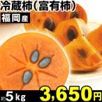 柿子 - 柿 福岡産 冷蔵柿(富有柿) 約5kg1箱 長期保存 冷蔵 食品