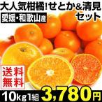 みかん 大人気柑橘!せとか&清見セット 10kg1組 ご家庭用 送料無料 特別版