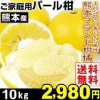みかん 熊本産 ご家庭用 パール柑 10kg1箱 送料無料 熊本ブランド柑橘 文旦 ぶんたん 上品な甘さ
